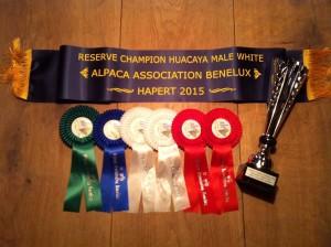alpacashow hapert 2015