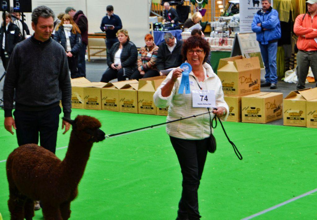 Alpacashow Ilshofen 2017 - VekoFarm Riva
